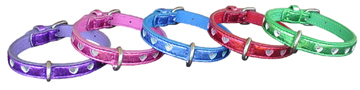 small medium and large dog collar